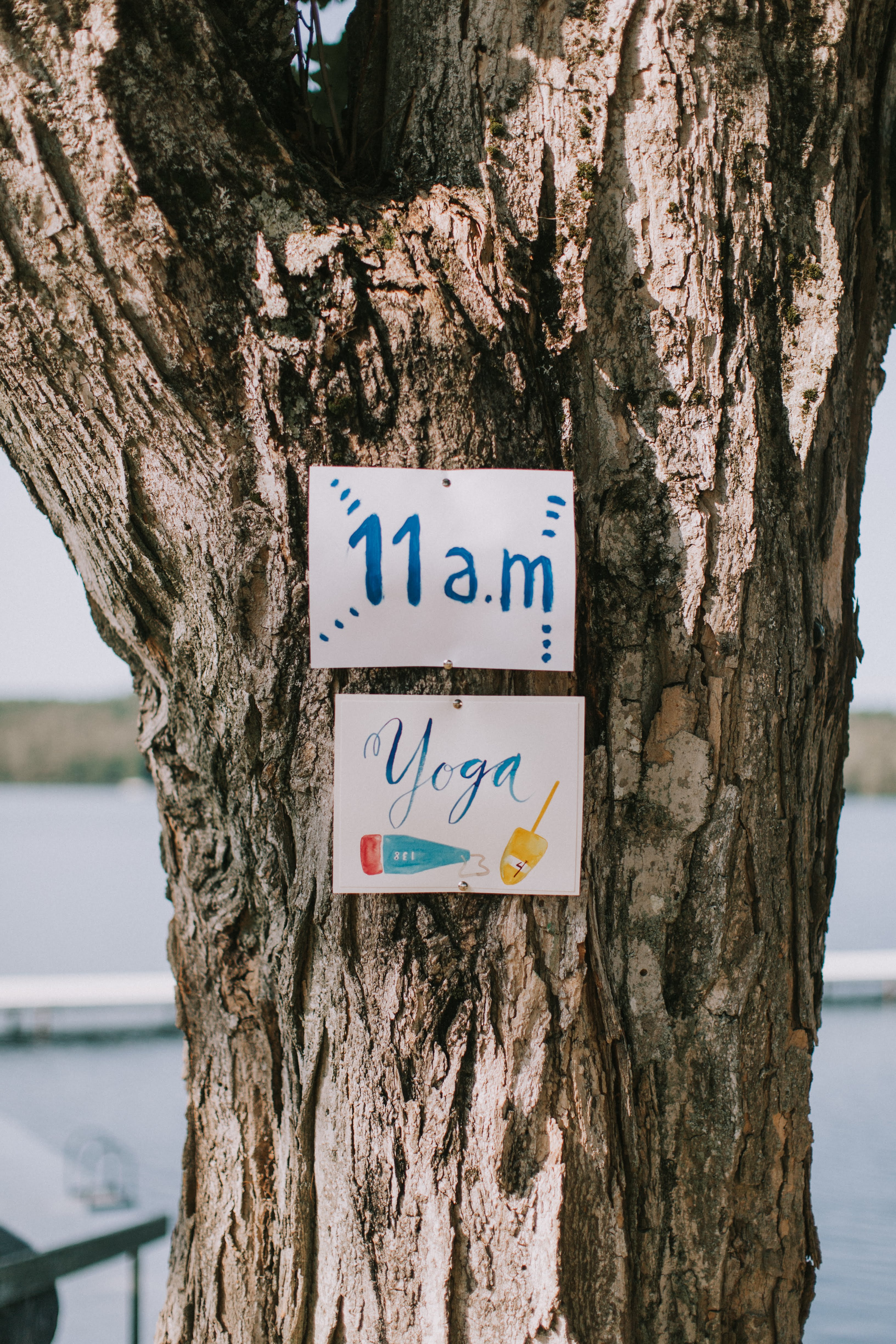 sofi ben camp weekend yoga sign on oak tree