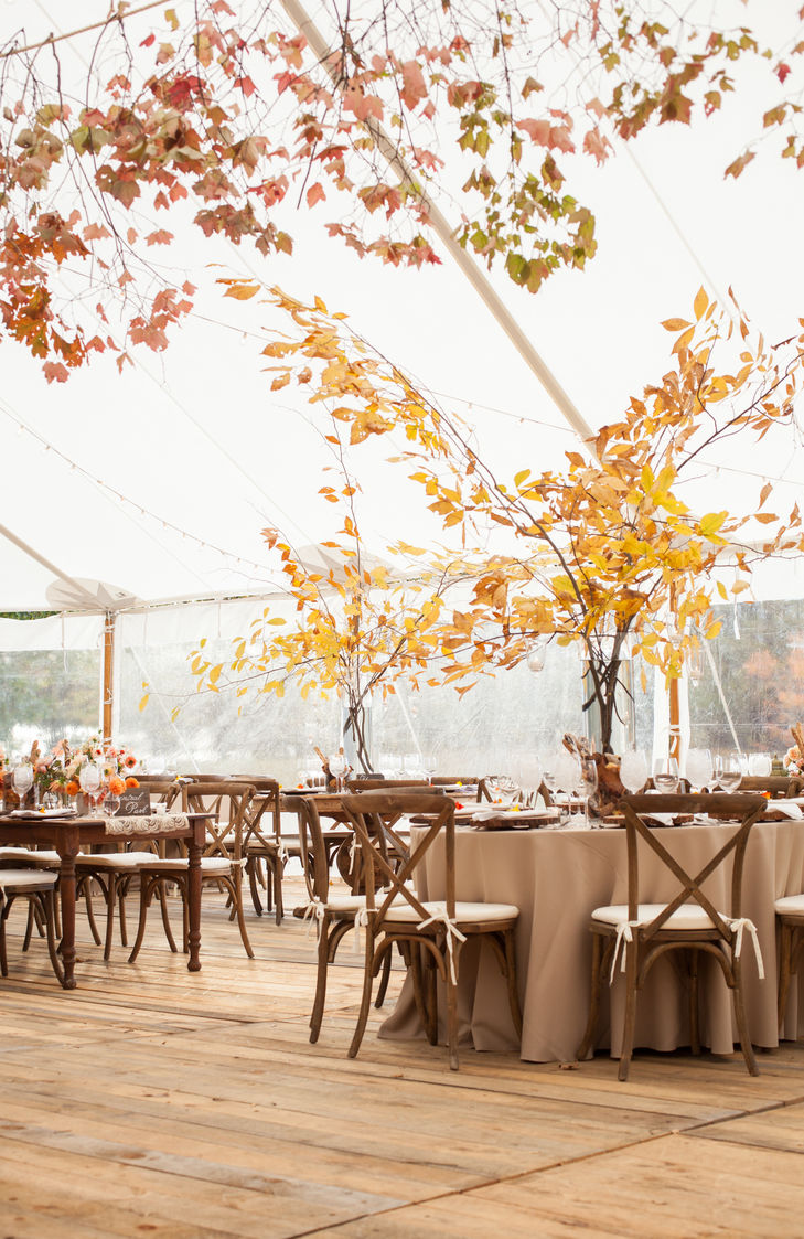 fall free centerpieces