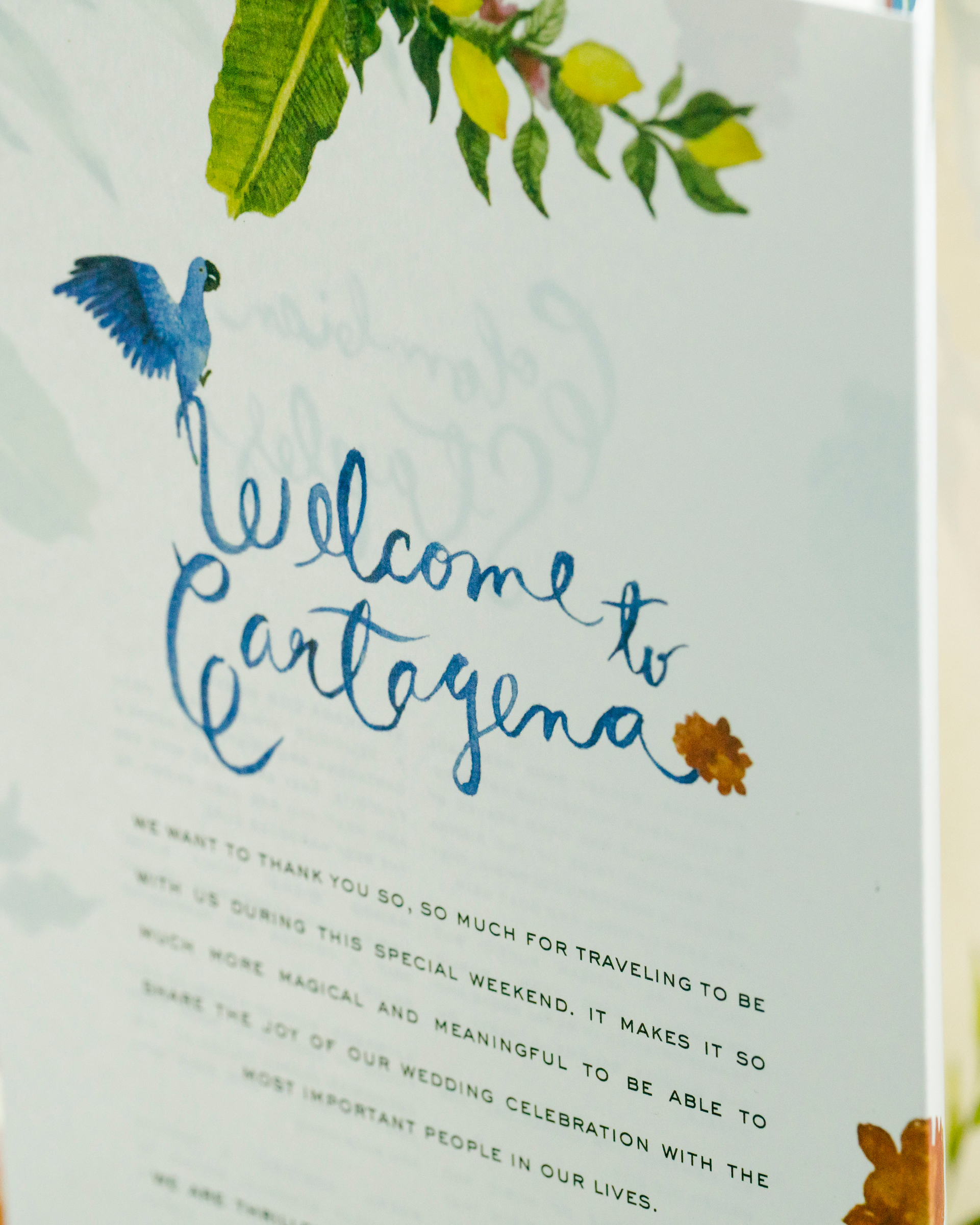 cristina andre wedding welcome