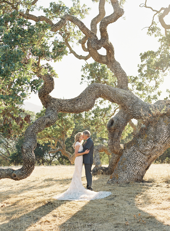 laurie michael wedding couple kissing beneath tree