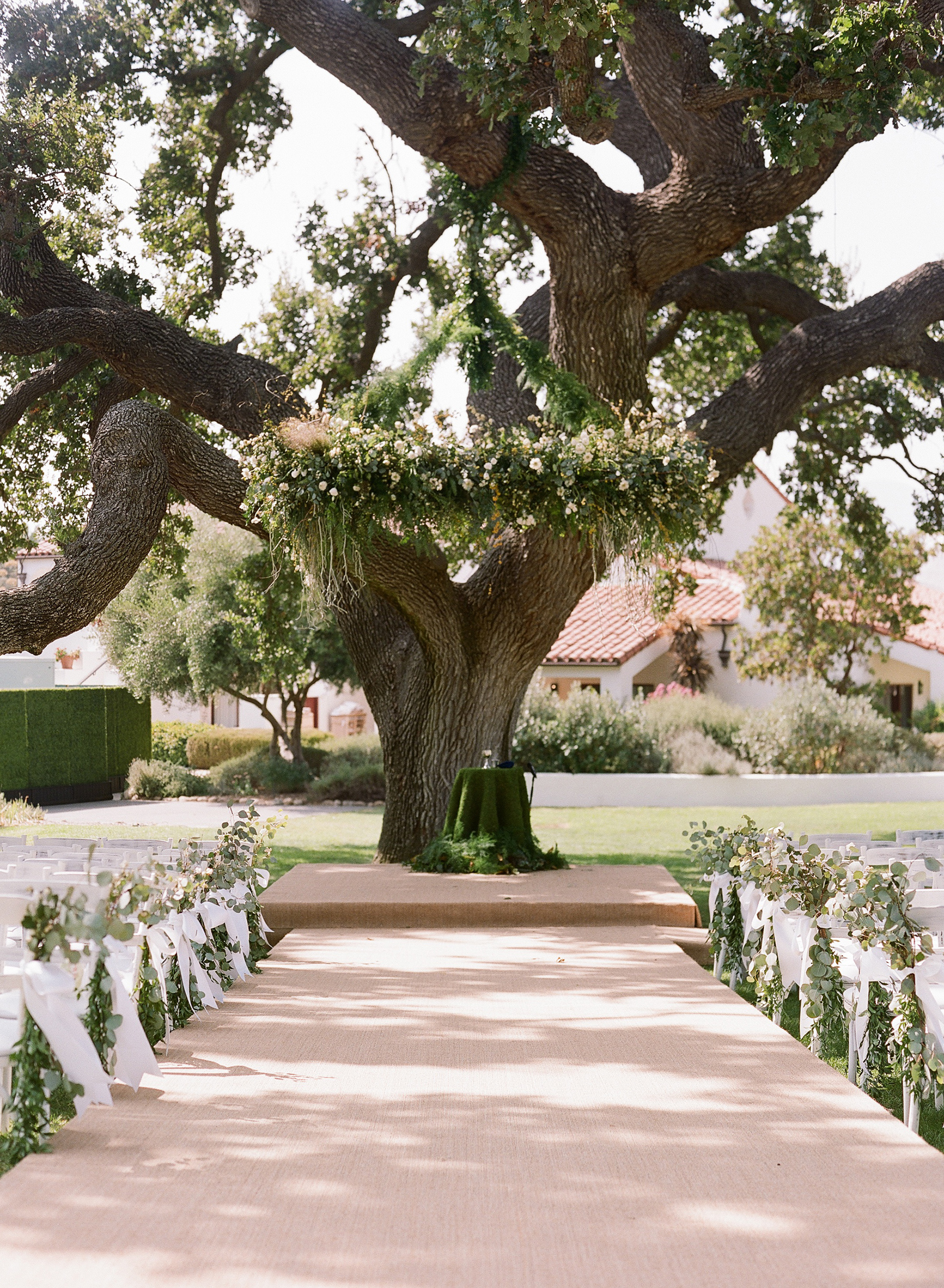 ashlie adam alpert wedding ceremony tree