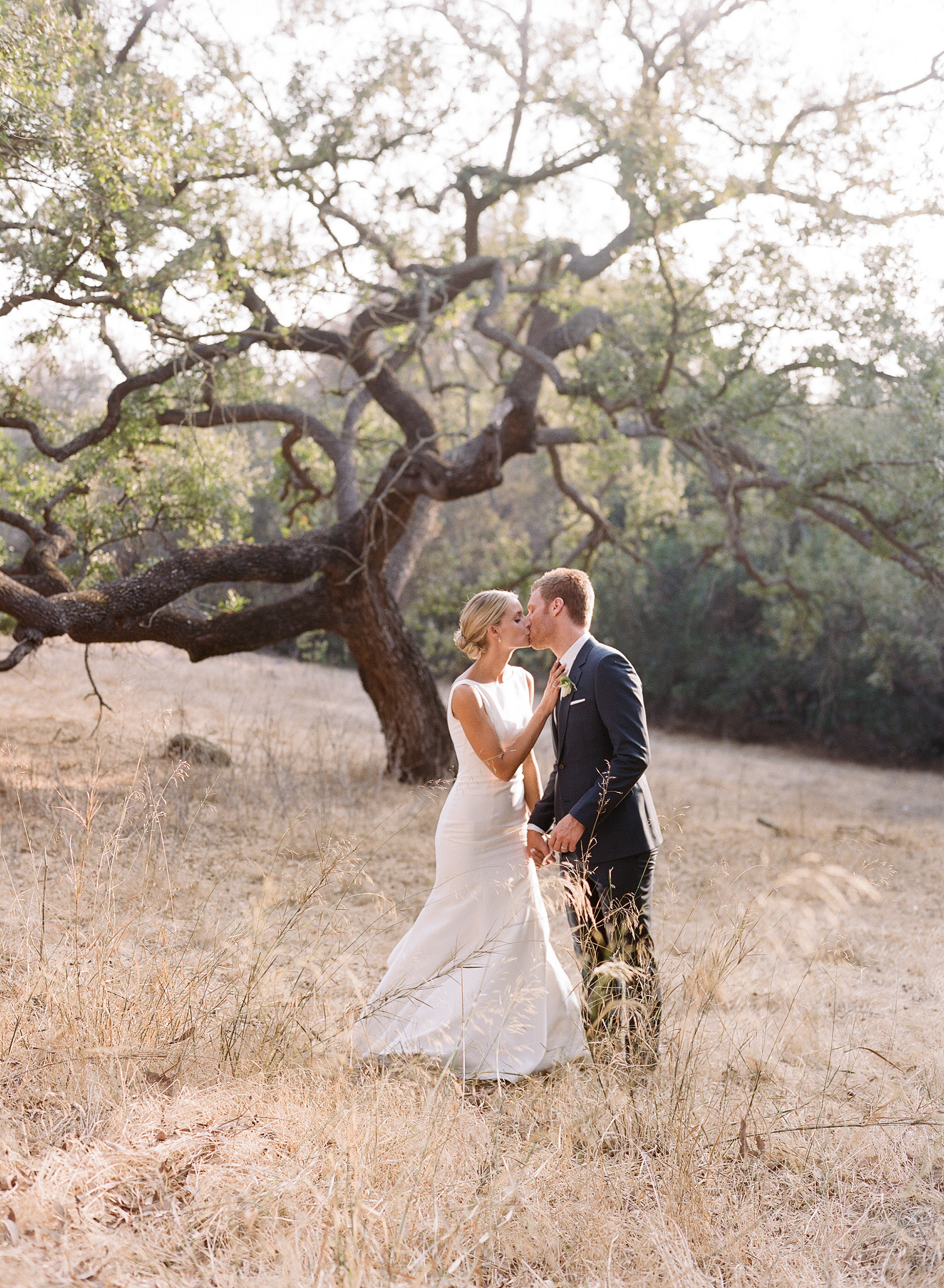 ashlie adam alpert wedding couple kissing in front of tree