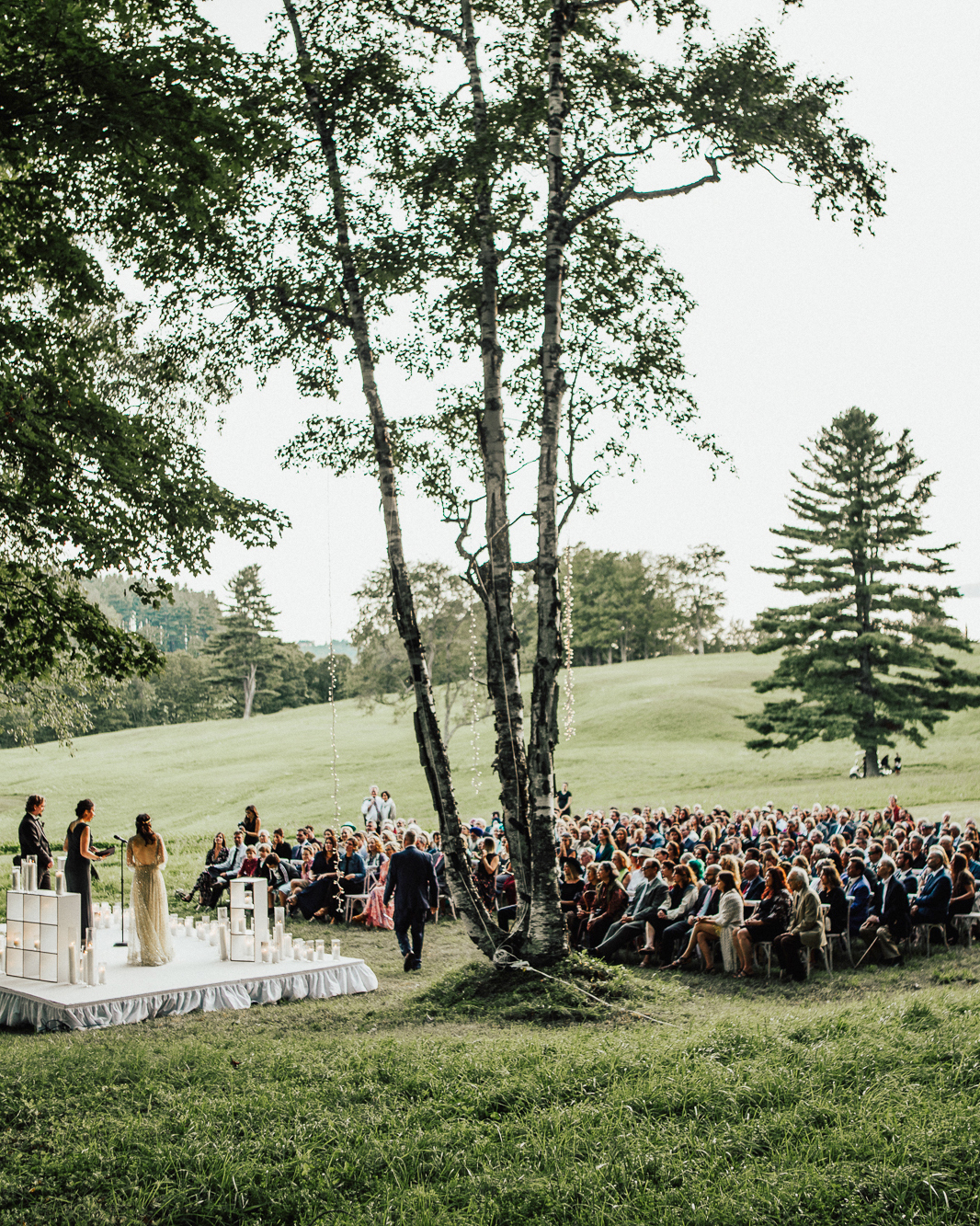 birch grove outdoor wedding ceremony space
