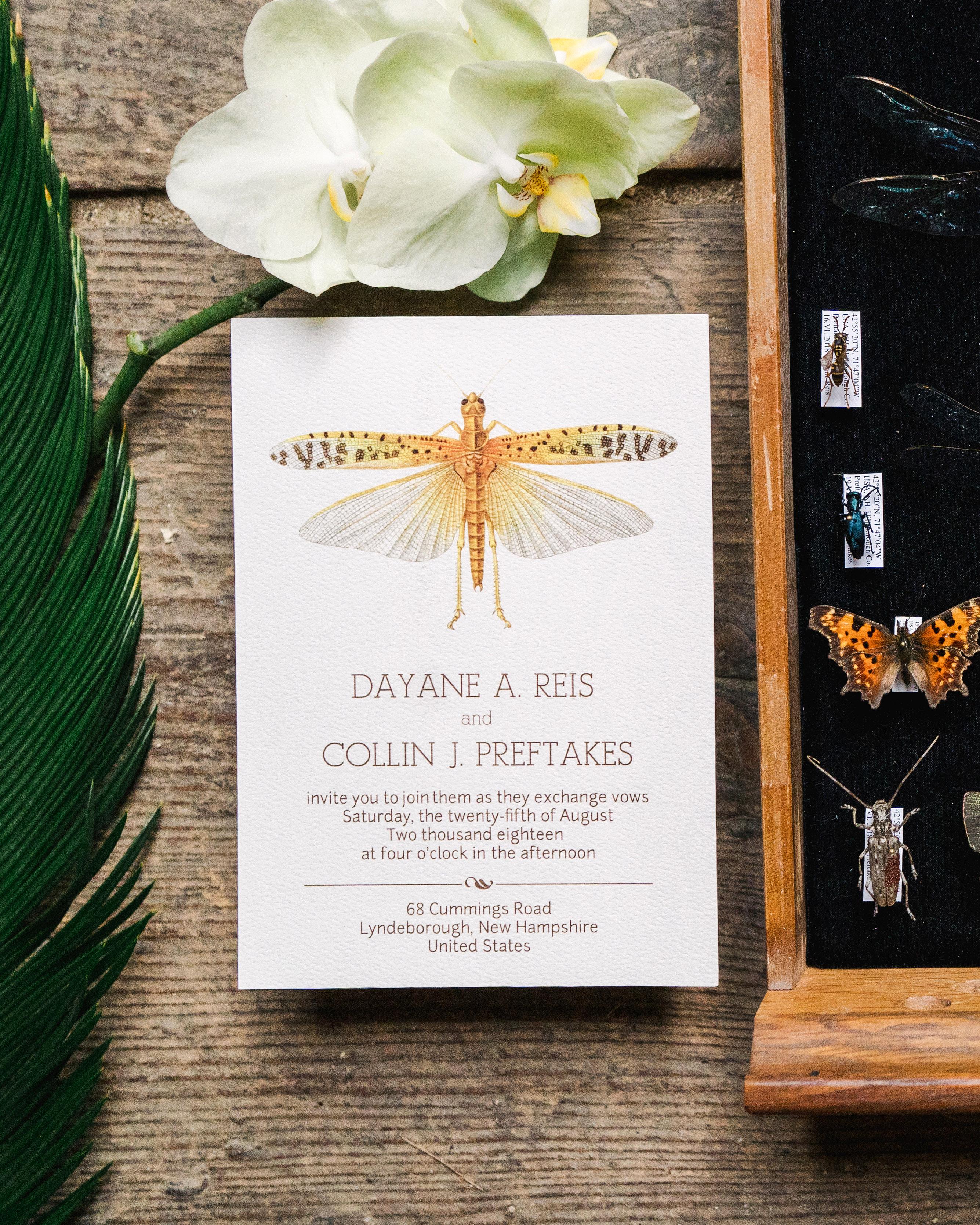 dayane collin wedding butterfly invitation
