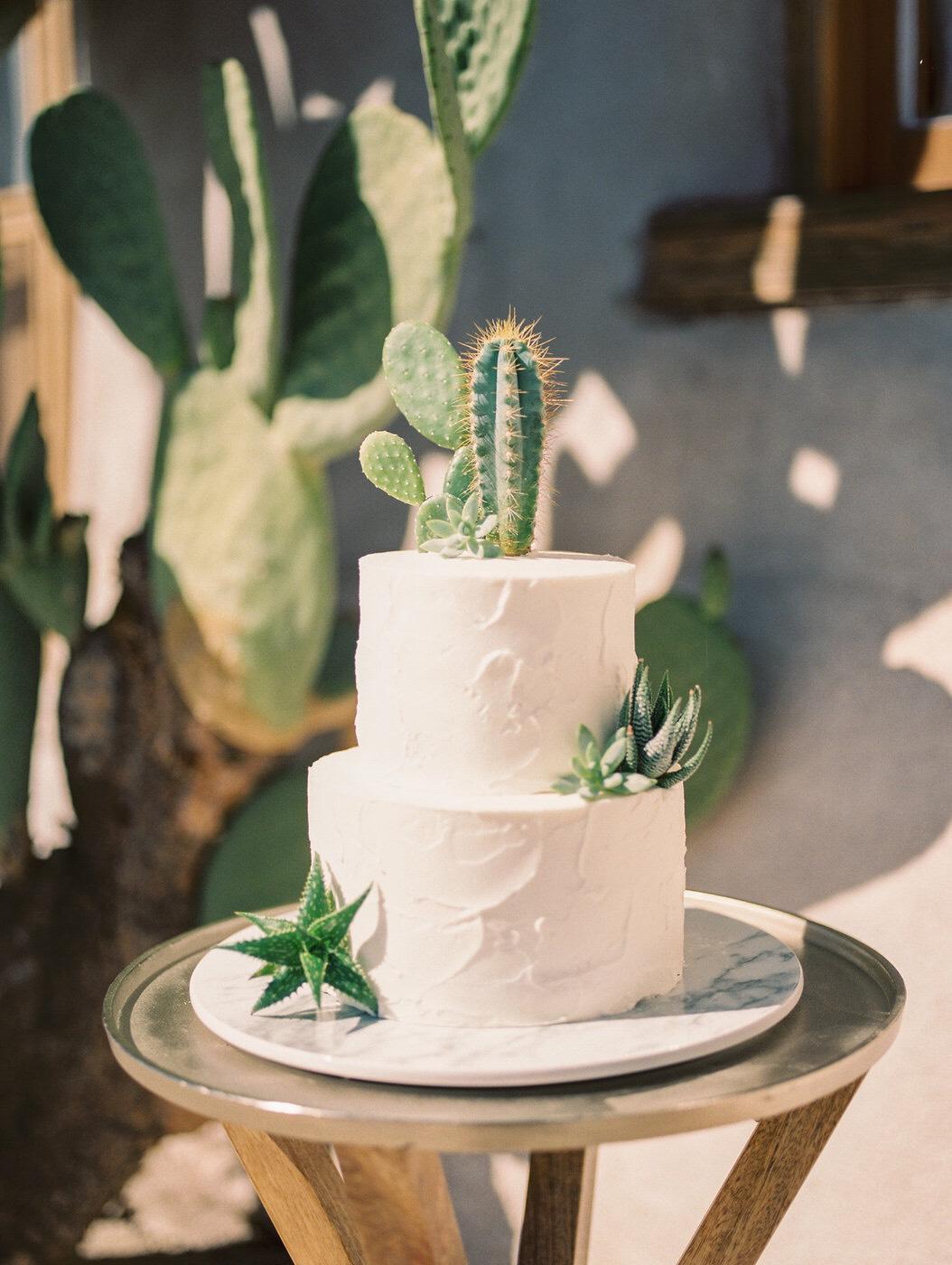 Desert Inspired Wedding Cake