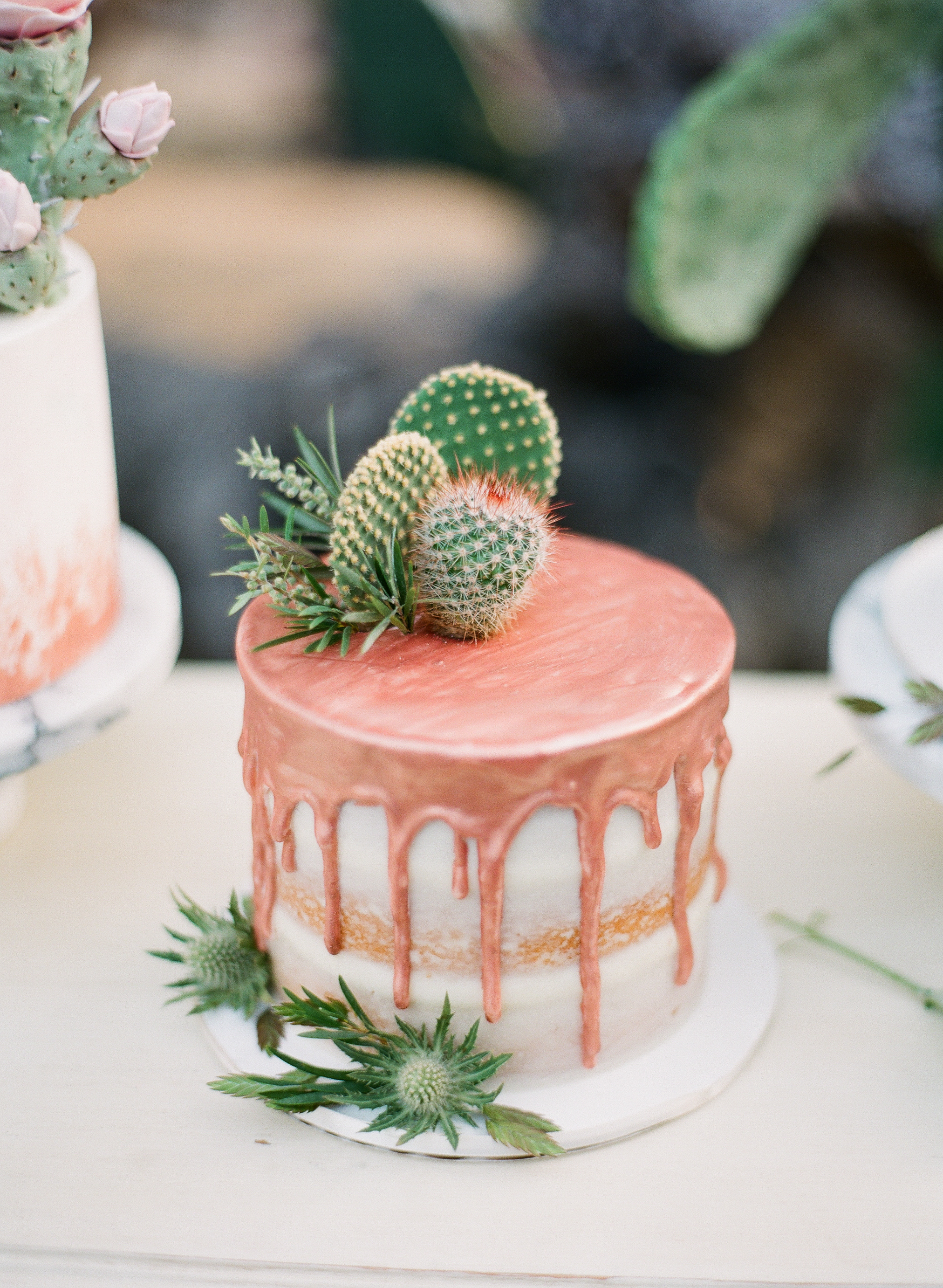 desert-inspired personal wedding cake with cactus and succulents