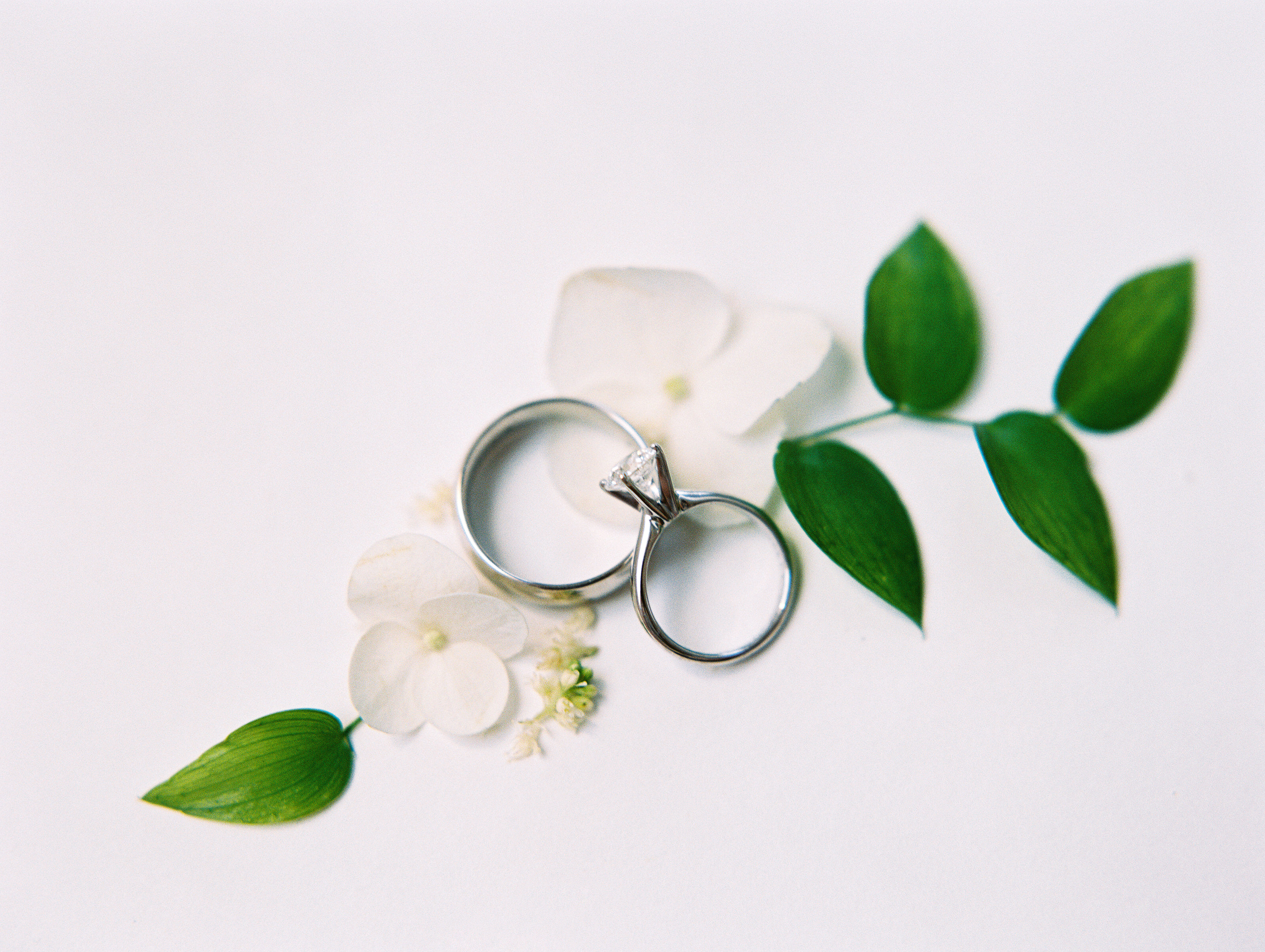 shakira travis wedding rings