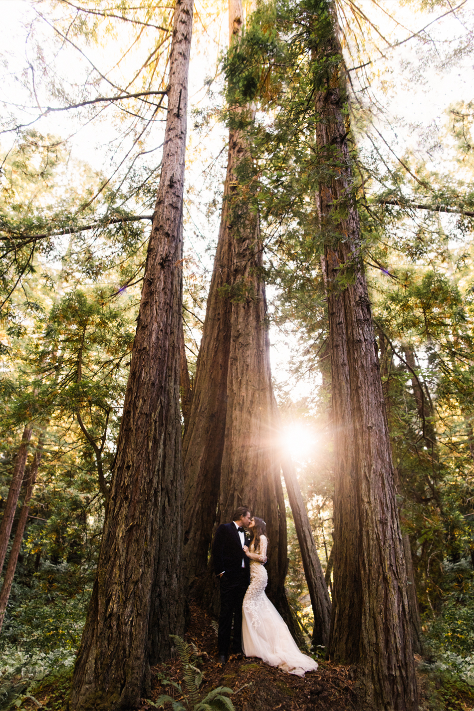 bride and groom standing in forest under tall trees