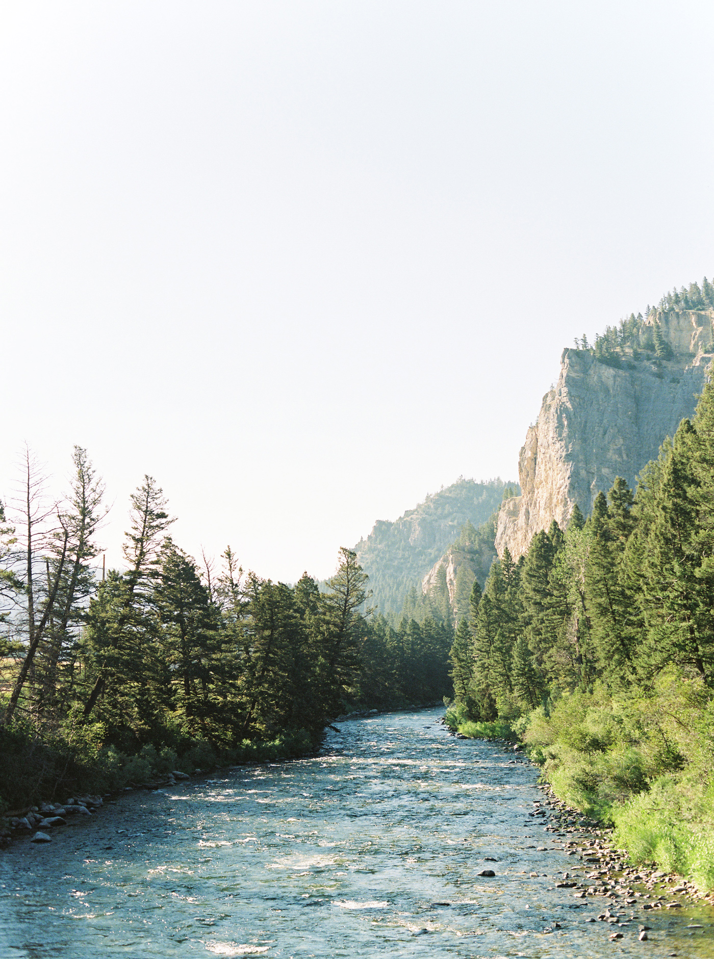river lined with trees next to mountain side