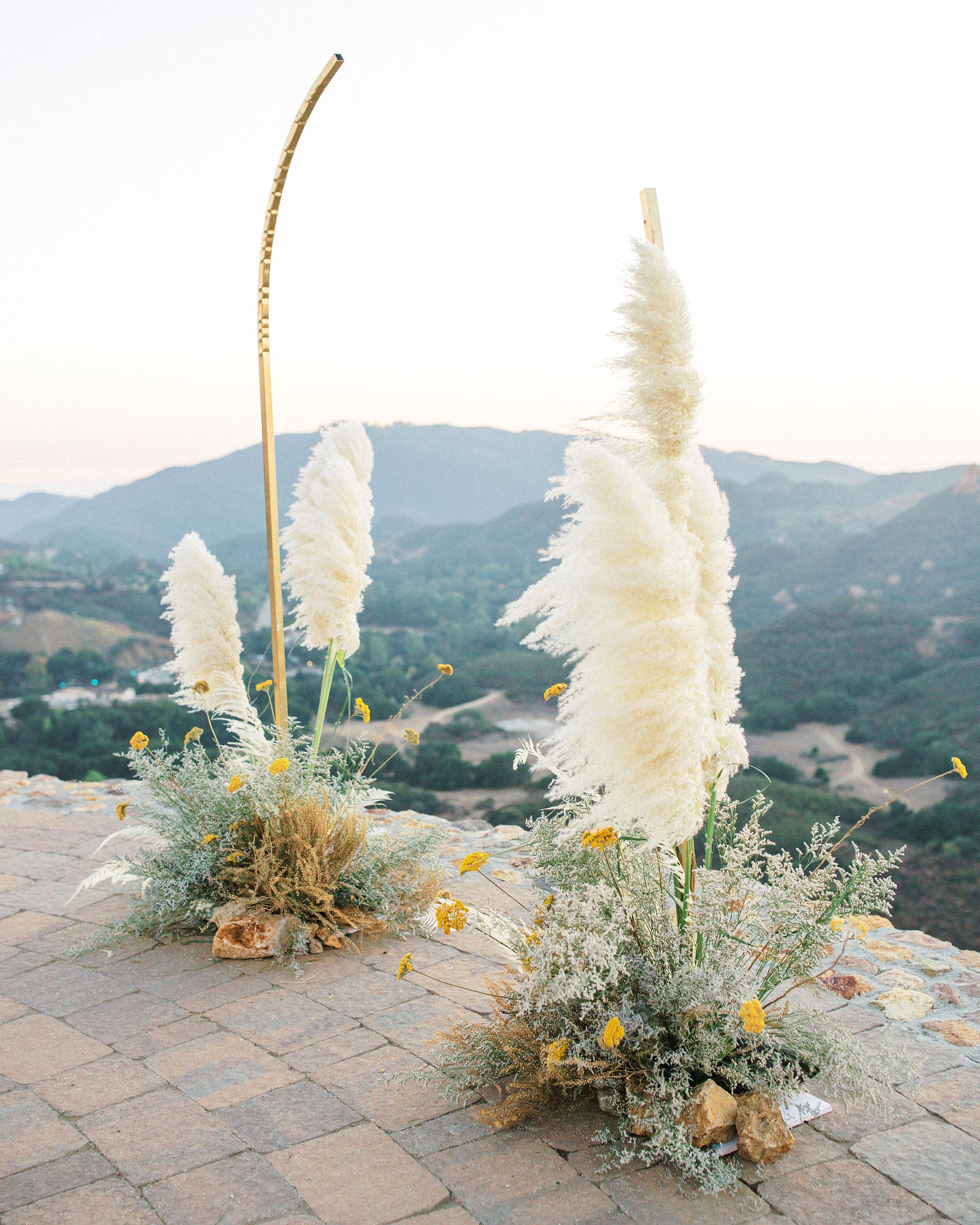 pampas grass ideas modern arrangement overlooking valley