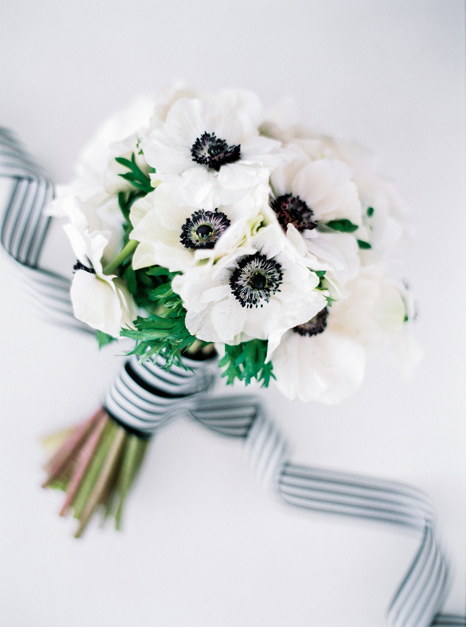 Her Black-and-White Bouquet