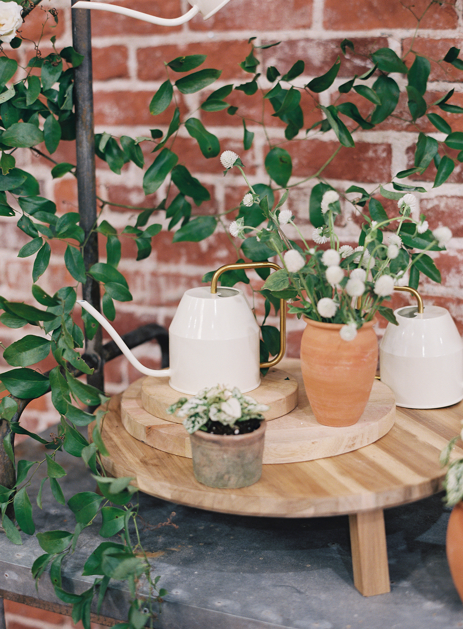 brooke dalton wedding watering cans on table