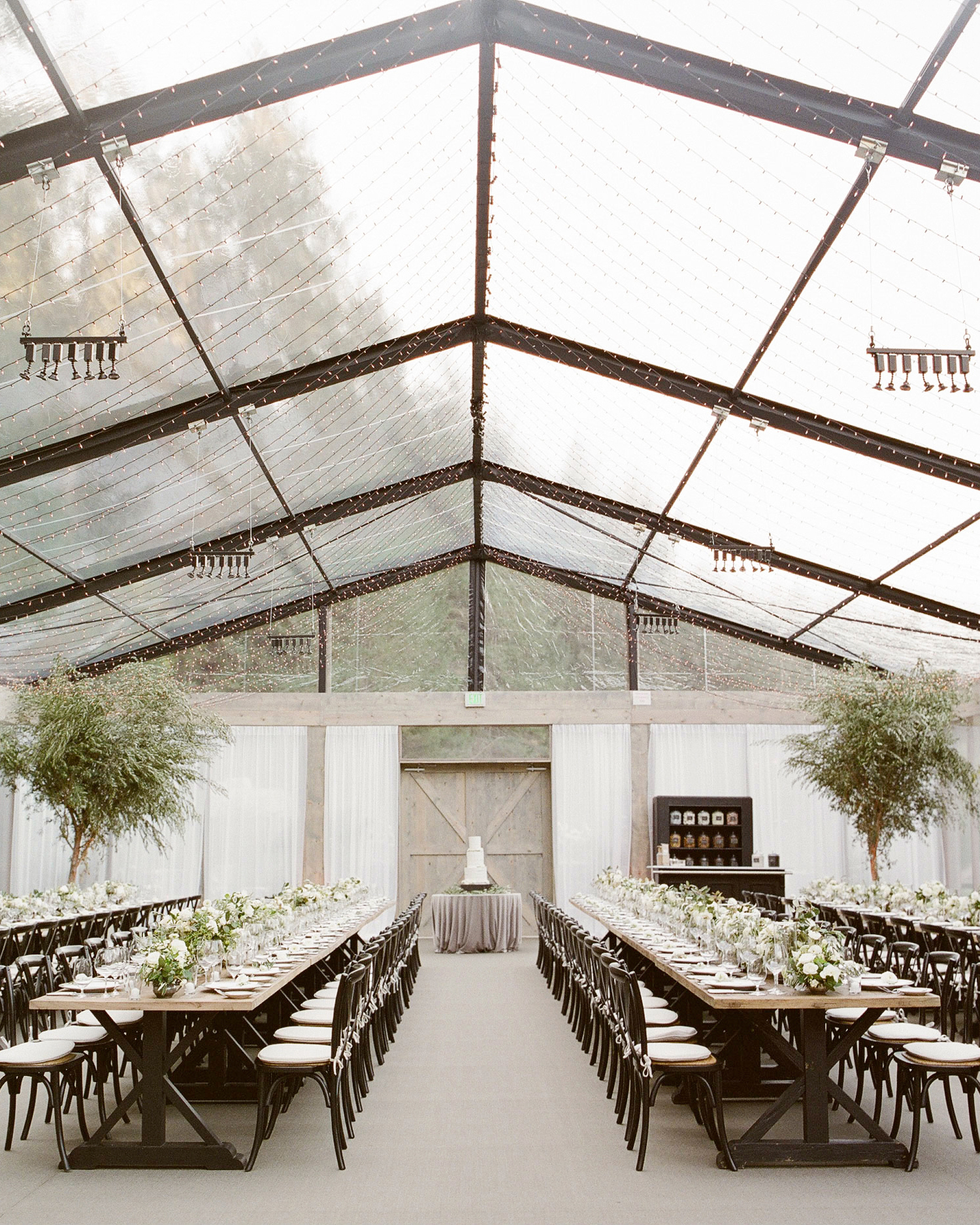 wedding reception clear tent olive trees