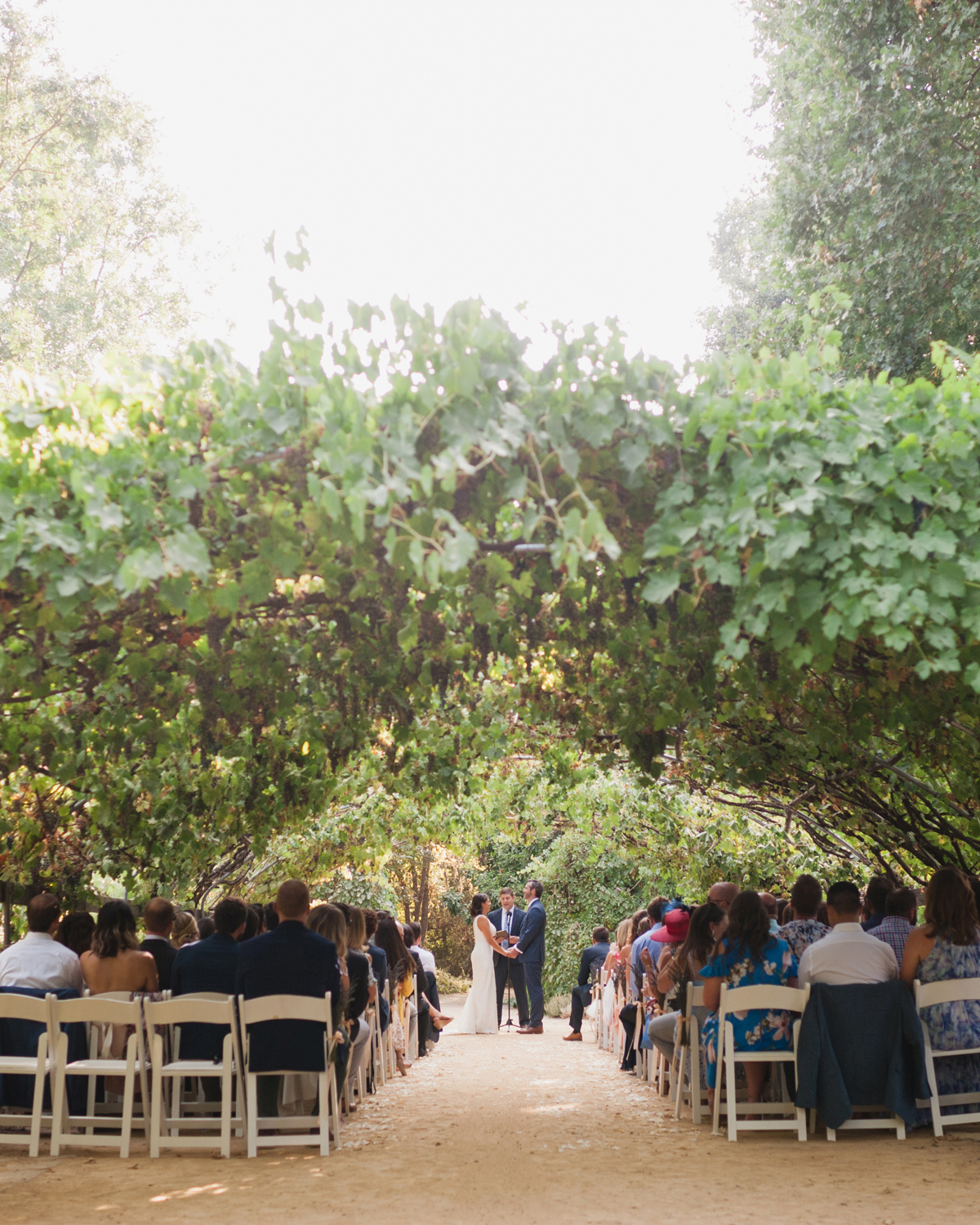 A Ceremony Under the Trees