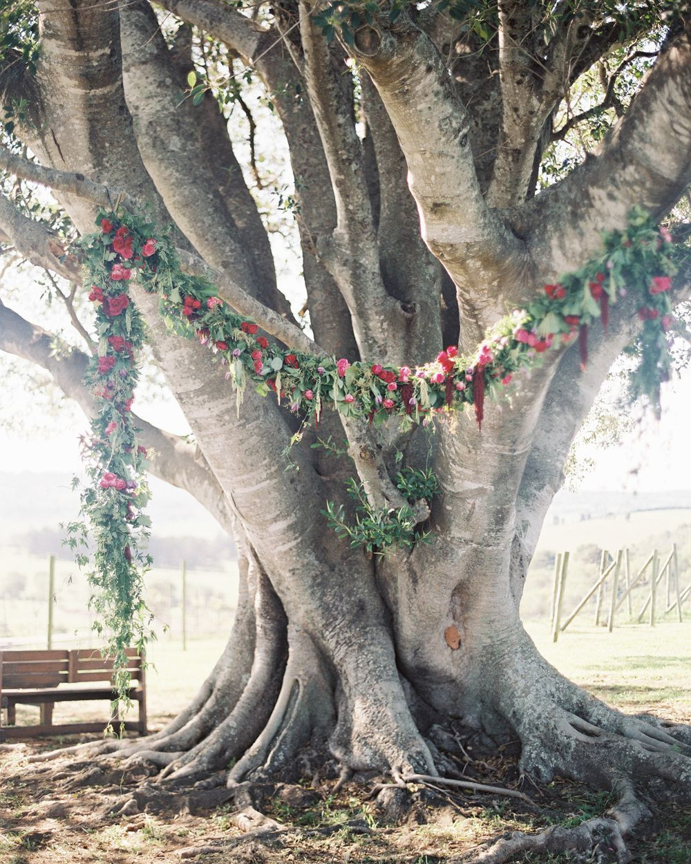 Floral Vine on tree wedding ceremony decor