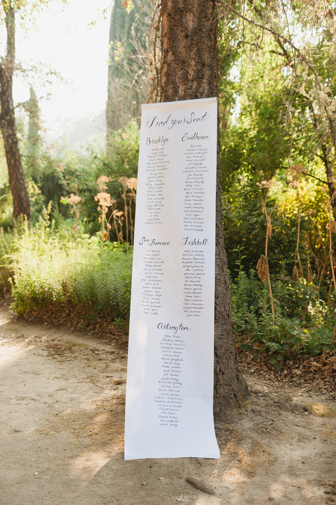 seating chart on long paper nailed to tree