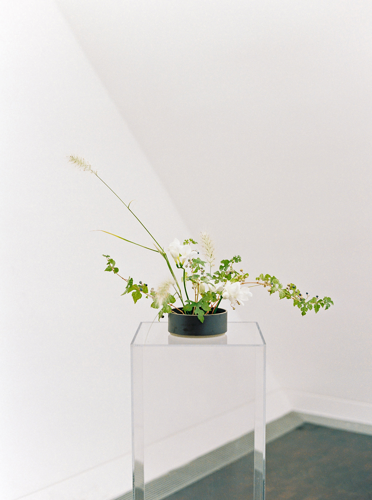 minimalist ikebana floral and greenery arrangement on clear table