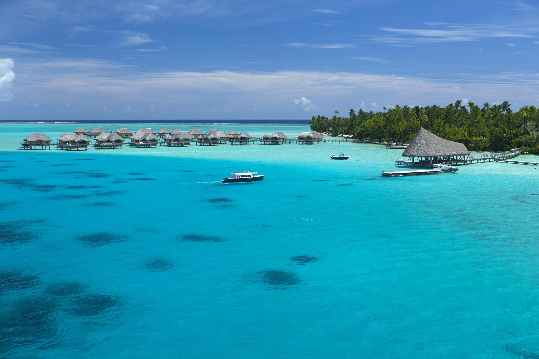 lagoons and lush trees on taha'a island