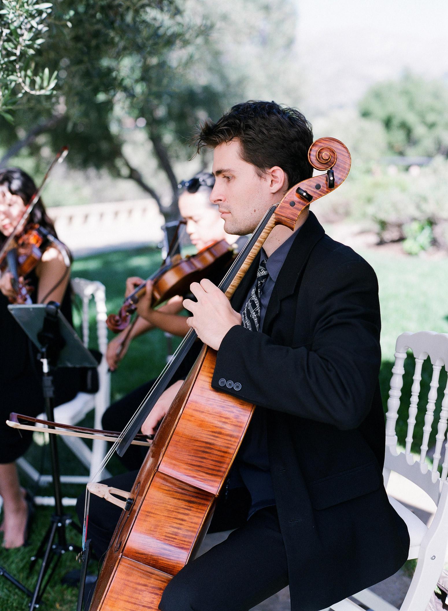 close-up of string quartet