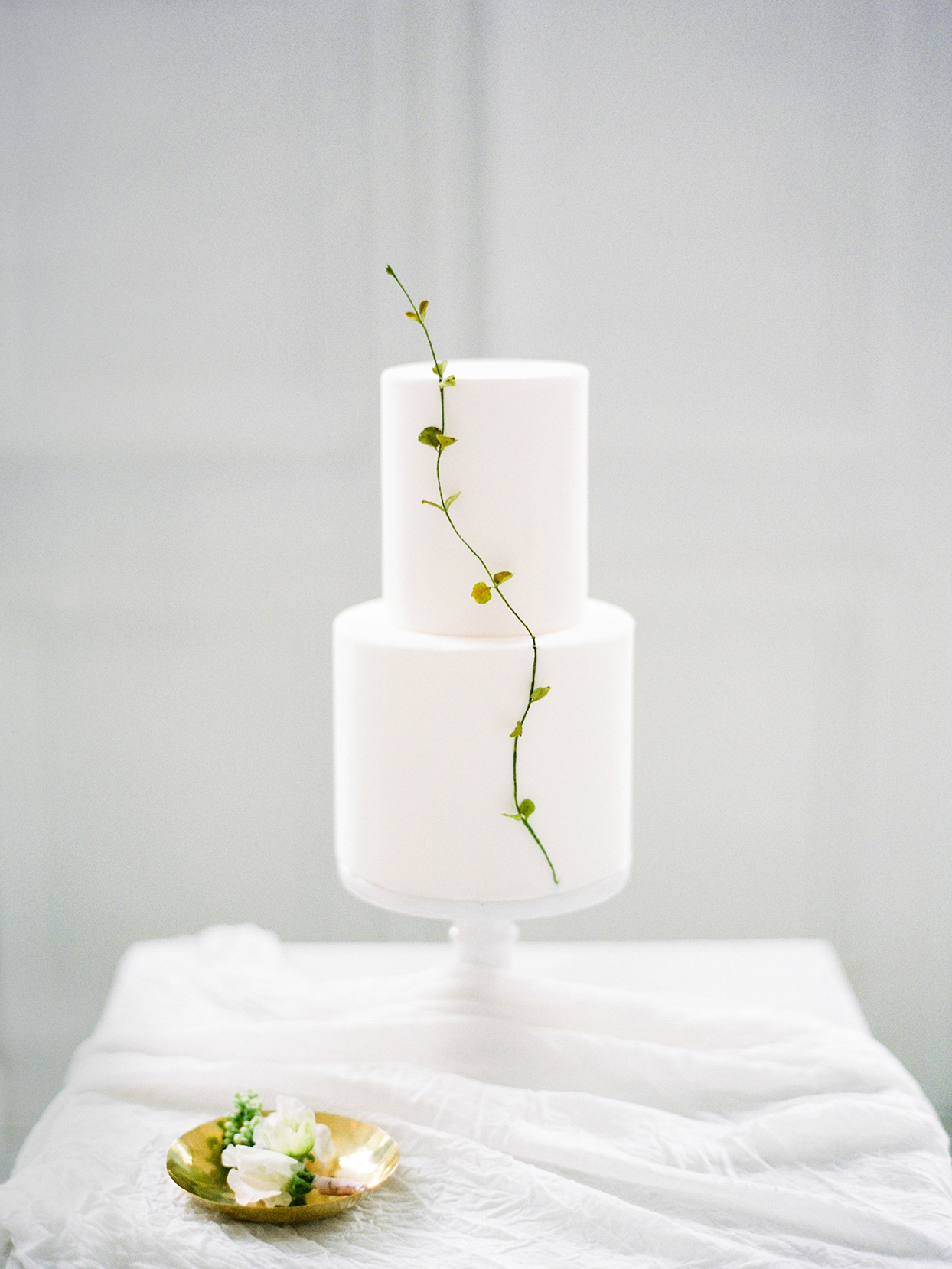 minimalist white two tier cake with small swivel sprig