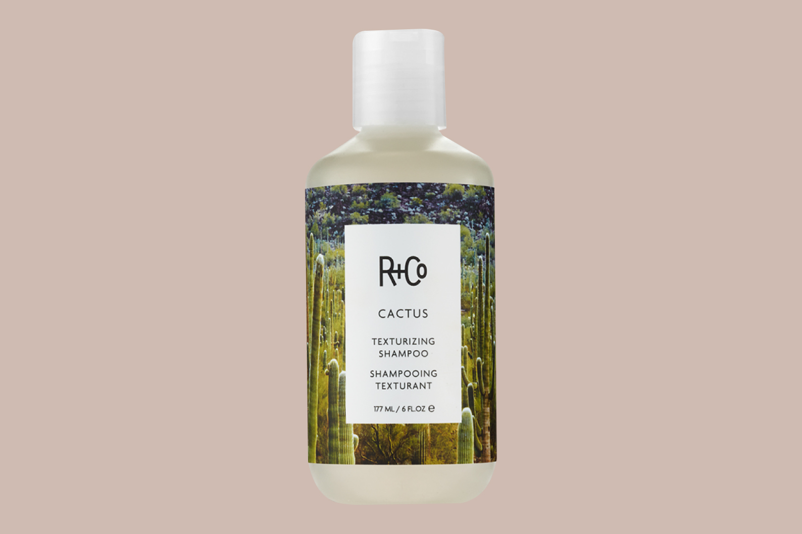 r + co cactus texturizing shampoo,