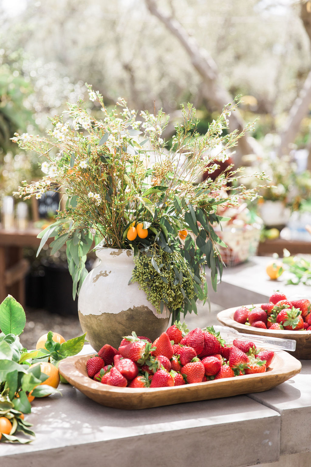 strawberry platters plant arrangement in rustic case