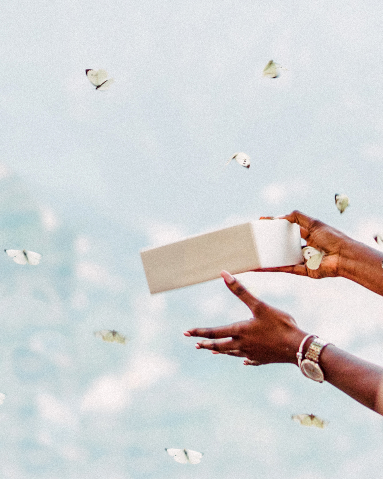 onome efe wedding butterflies
