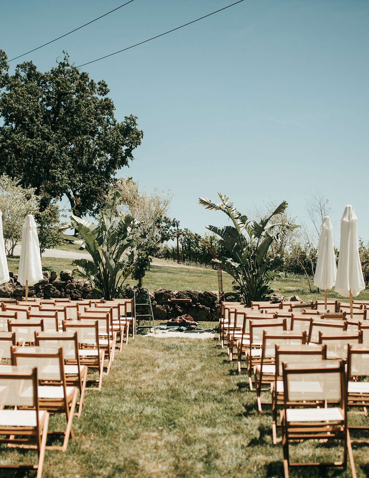 austin alex wedding outdoor ceremony location