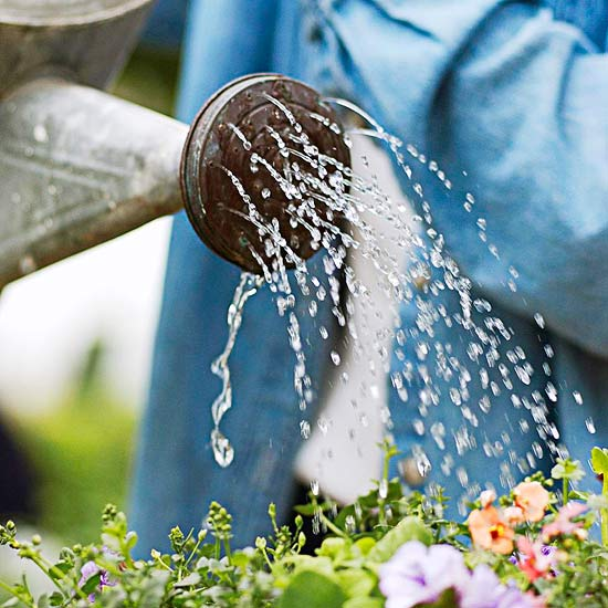 7 Watering Tools That Will Solve Your Dry Yard Problems