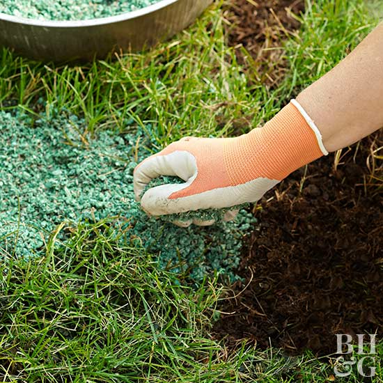 Spring Lawn Care: Fertilizing Basics