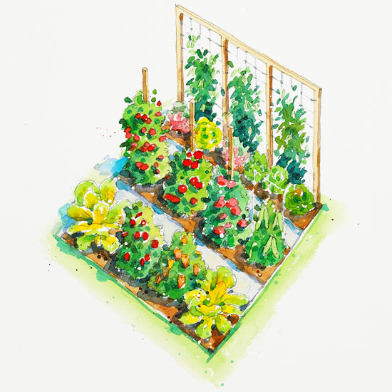 All-American Vegetable Garden Plan