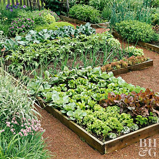 Create Perfect Kitchen Garden Style