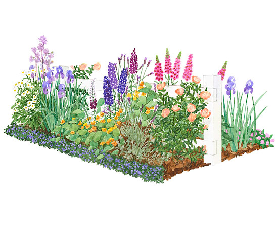 Front Yard Cottage Garden Plan
