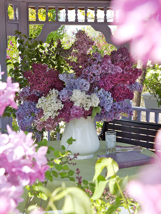 The Most Beautiful Spring Flowering Shrubs