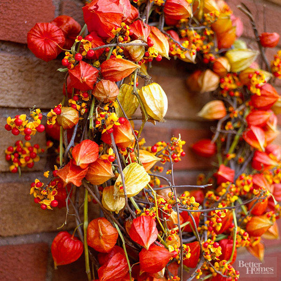 Wreath made of bittersweet vines and Chinese lanterns