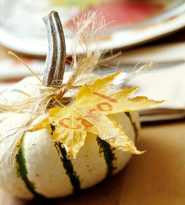 Gourd as place card for tabletop