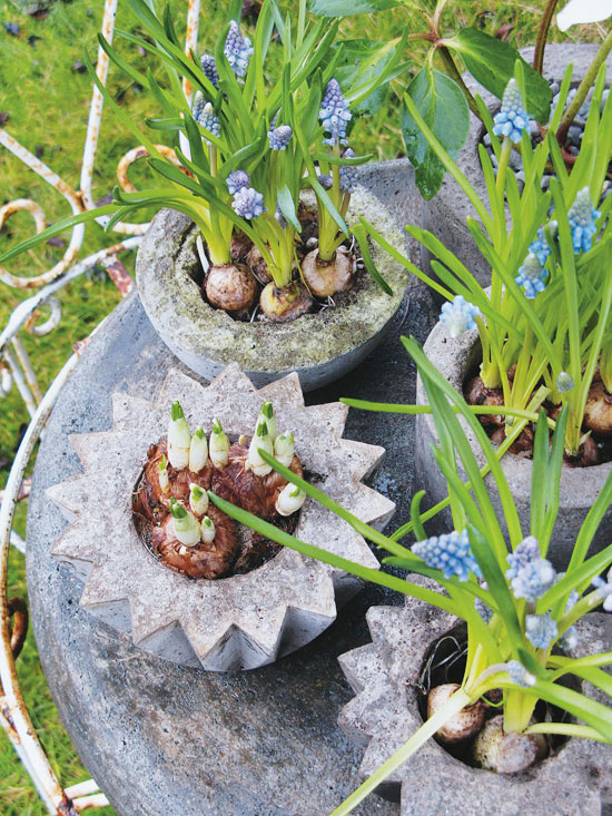 Make Your Own Concrete Planters