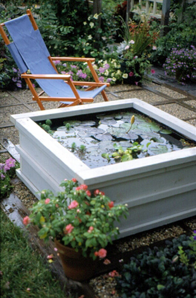 A Pond for Your Patio