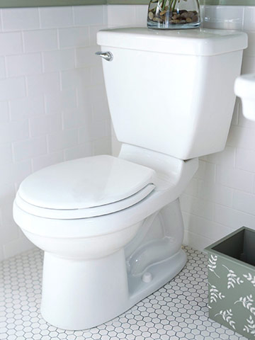 The Walls Around Your Toilet