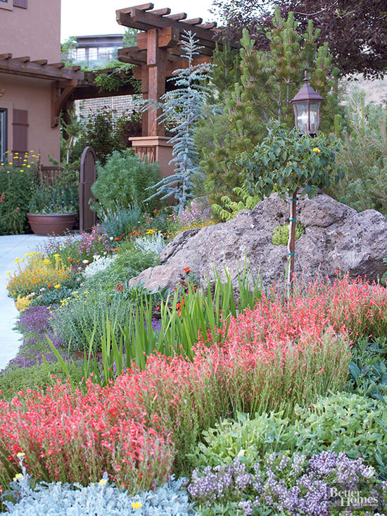 Xeriscaping is the Latest Gardening Buzz Word—What Does it Mean? on for front yard rock landscaping ideas, japanese back yard landscaping ideas, small backyard landscape ideas, inexpensive landscaping ideas, modern back yard landscaping ideas,