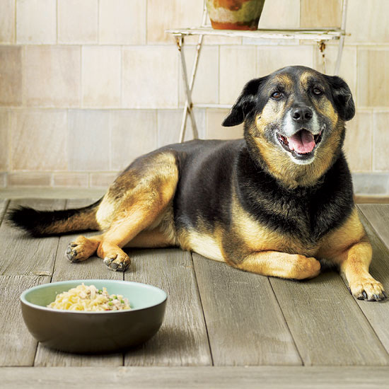 Recipes to Share with Your Pet