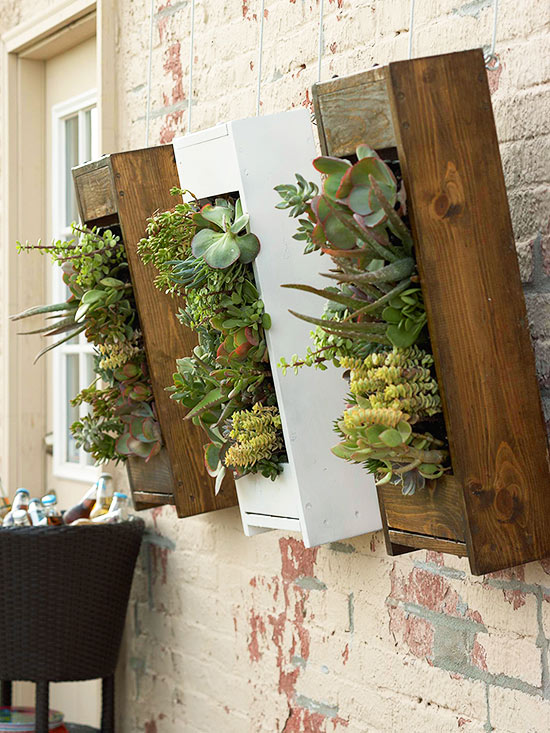 Go Vertical with Your Gardening