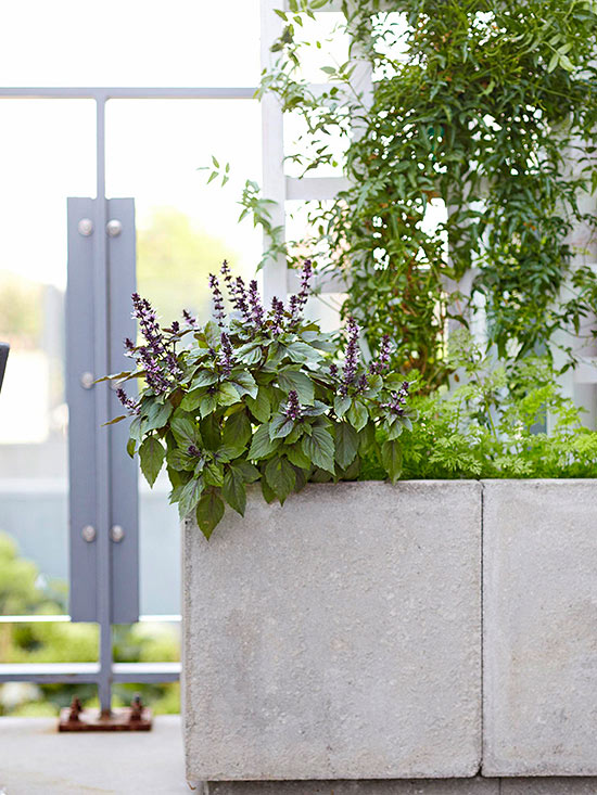 Simple-to-Make Planters