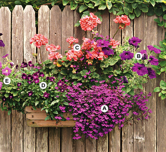 36 Great Containers for Gardening