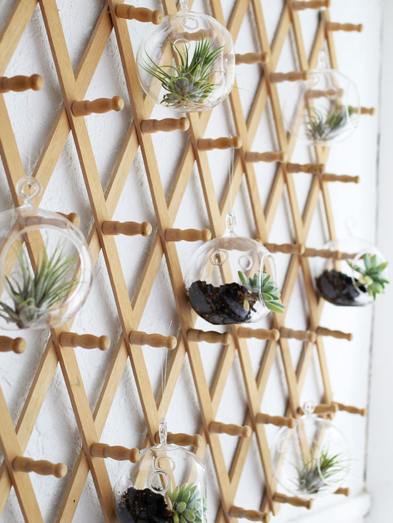 Coat Rack Hanging Garden