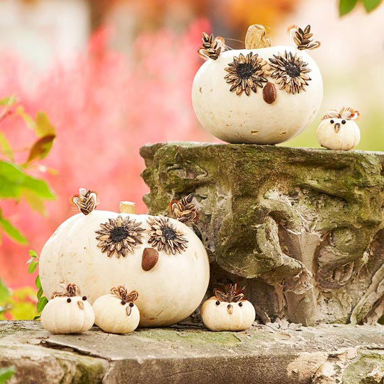 Crafty Gourd Critters
