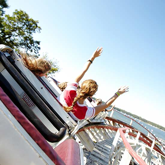 Amusement Park Survival Guide