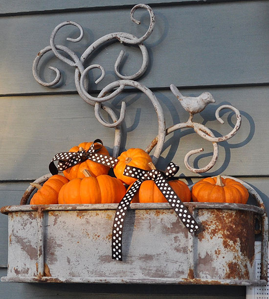 Wall Planter Pumpkin Patch