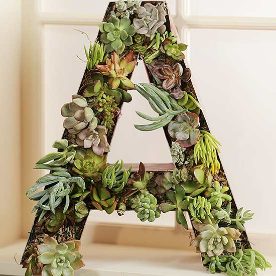 Make a Succulent Monogram Planter from a Salvaged Sign Letter