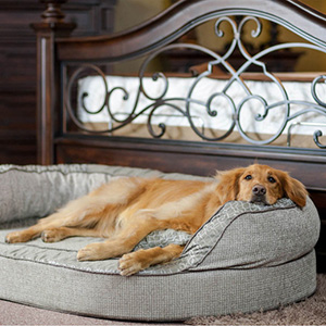 Overstock-dogbed_300sq.jpg